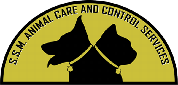 SSM Animal Care and Control Services Website Development