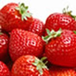 Miramar launches a new website for Thomson Strawberry Farm